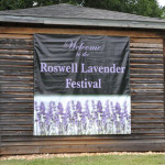 Barrington Hall Lavendar Festival Roswell Georgia